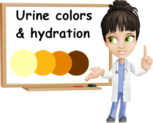 Urine colors and hydration