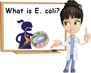 What is E. coli