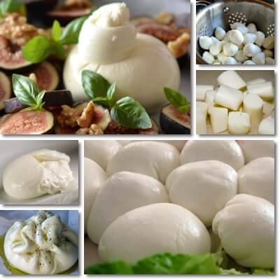 Mozzarella and burrata differences