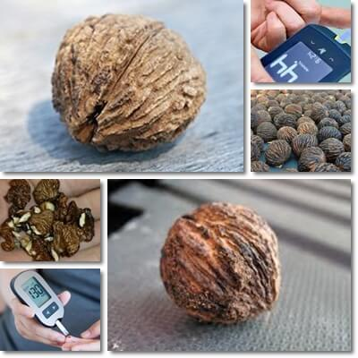 Can diabetics eat black walnuts