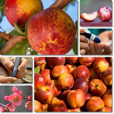 Nectarine good for diabetes