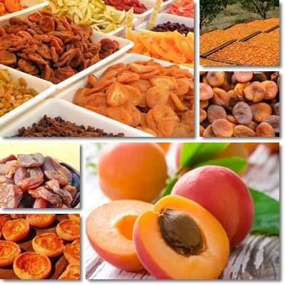 Dried apricots glycemic index
