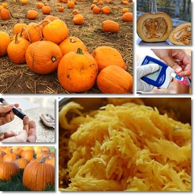 Is Pumpkin Low or High Glycemic?