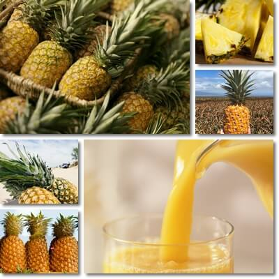 Pineapple glycemic index