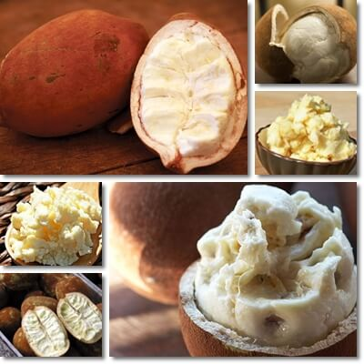 Cupuacu butter benefits for skin
