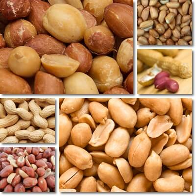 The Glycemic Index of Peanuts