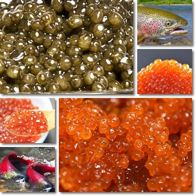 Fish eggs benefits