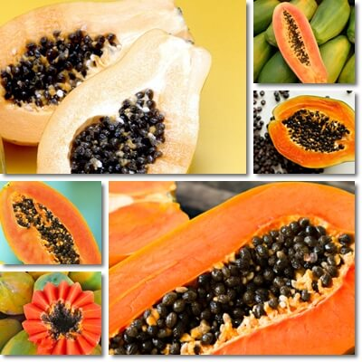 Papaya glycemic index