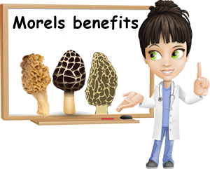 Morels benefits