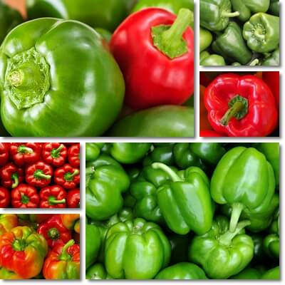 Green vs red bell peppers