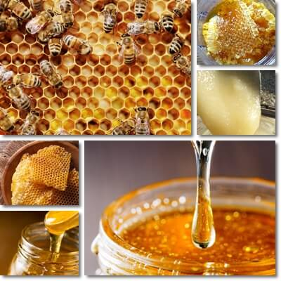Honey facts and myths