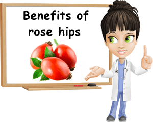 Benefits of rose hip
