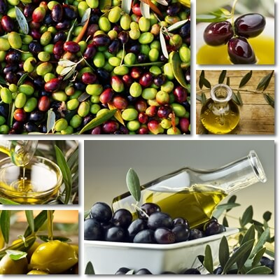 Extra virgin or regular olive oil healthy