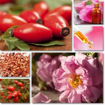 Rose hip oil versus rose oil
