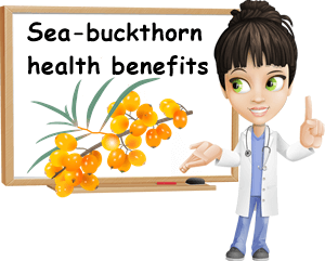 Sea-buckthorn benefits