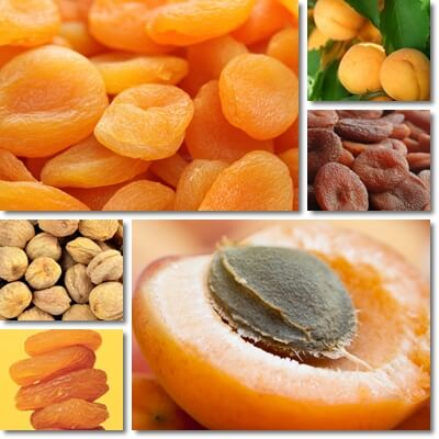 Dried apricots iron content