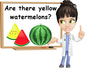 Why are some watermelons yellow