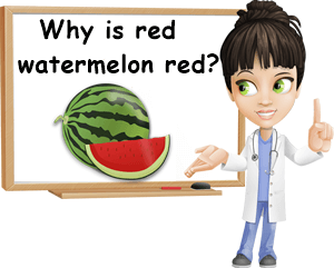 Why is watermelon red