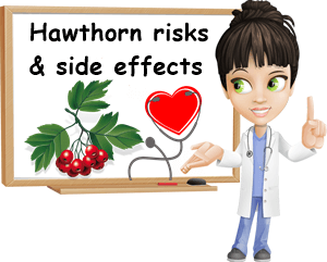 Hawthorn side effects and risks