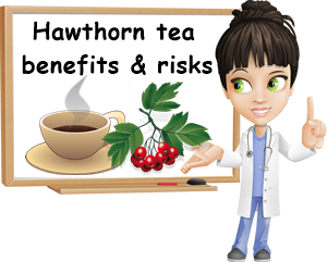 Hawthorn tea benefits and side effects