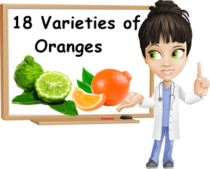 Varieties of oranges
