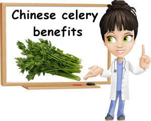 Chinese celery benefits