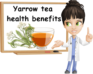 Yarrow tea benefits