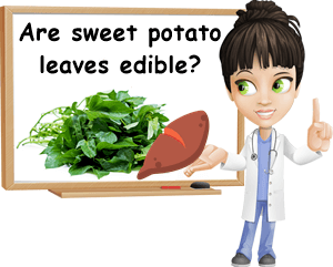 Sweet potato leaves edible