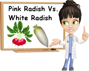 Difference pink white radishes