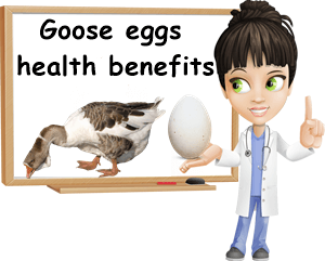 Goose eggs benefits for health