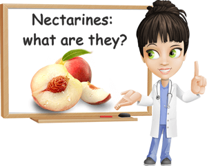 What is a nectarine
