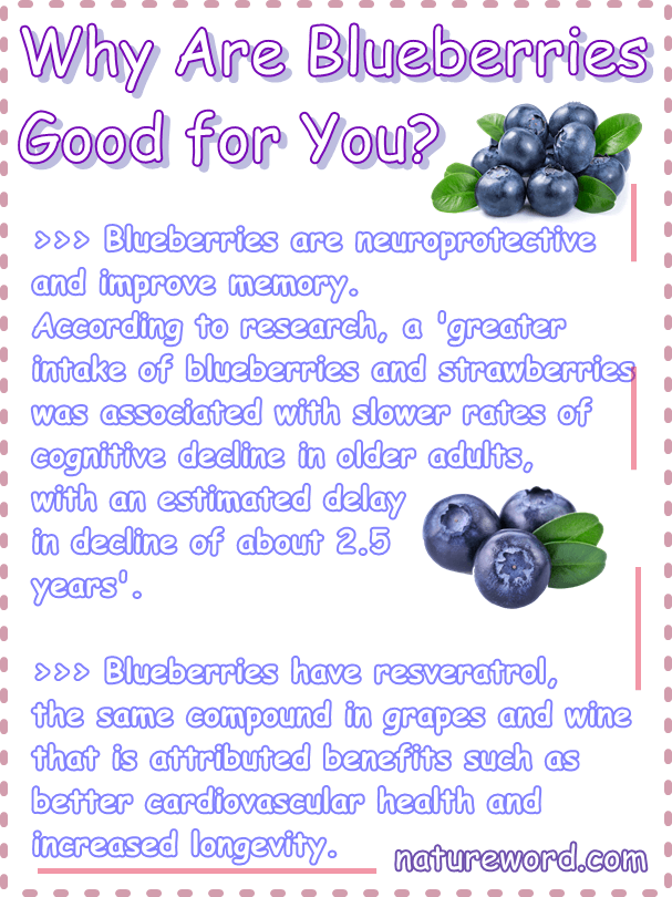 Blueberries good for you 3